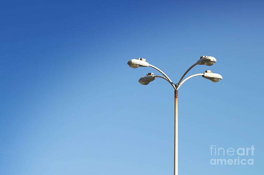 Light Photograph - Urban Flower by Henrik Lehnerer