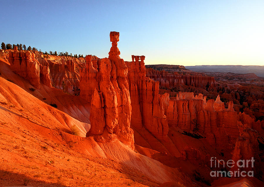 Bryce Canyon National Park Photograph - Utah - Thors Hammer 2 by Terry Elniski