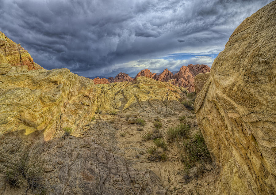 Hdr Photograph - Vantage Point by Stephen Campbell