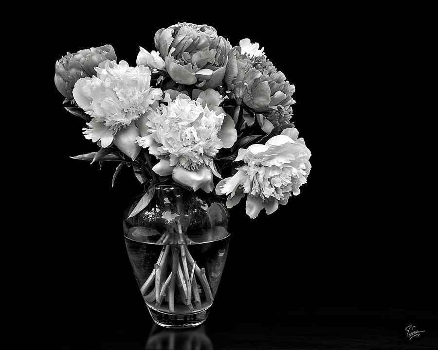 Vase Of Peonies In Black And White Photograph by Endre Balogh