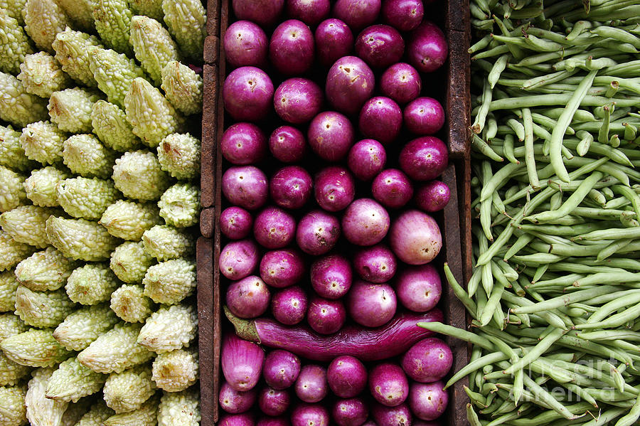 Agriculture Photograph - Vegetable Triptych by Jane Rix