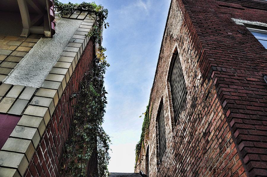 Architectural Photograph - Vertigo by Jan Amiss Photography