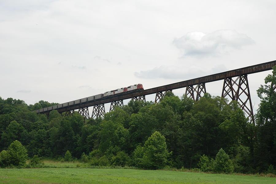 Train Photograph - Viaduct Series-summer by Cheryl Helms