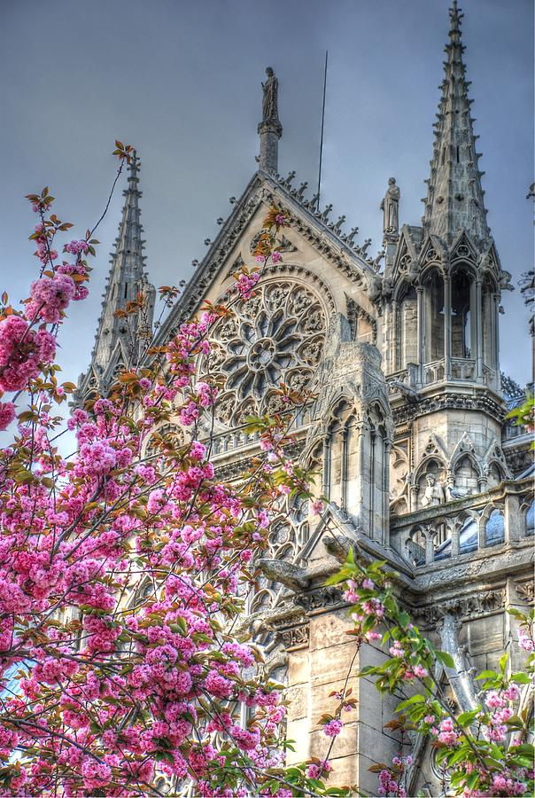 Notre Dame Photograph - Vibrant Cathedral by Jennifer Ancker