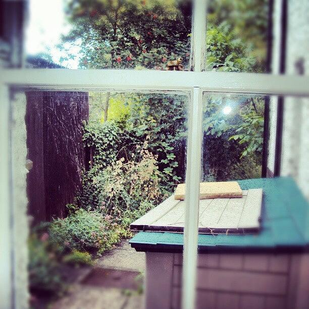 Cambridge Photograph - View From My Window, #cambridge #view by Abdelrahman Alawwad