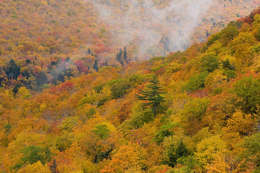 Autumn Colors Photograph - View From North Mountain Look-off by John Sylvester