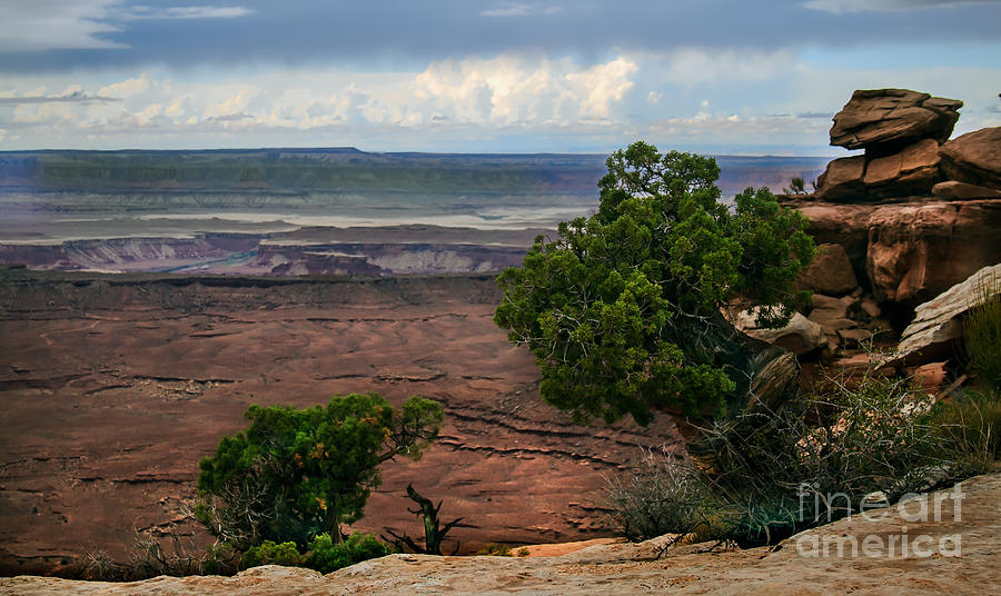 Panoramic Photograph - View Of Canyonland by Robert Bales