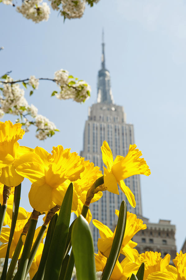 City Photograph - Views Of The Empire State Building And by Axiom Photographic