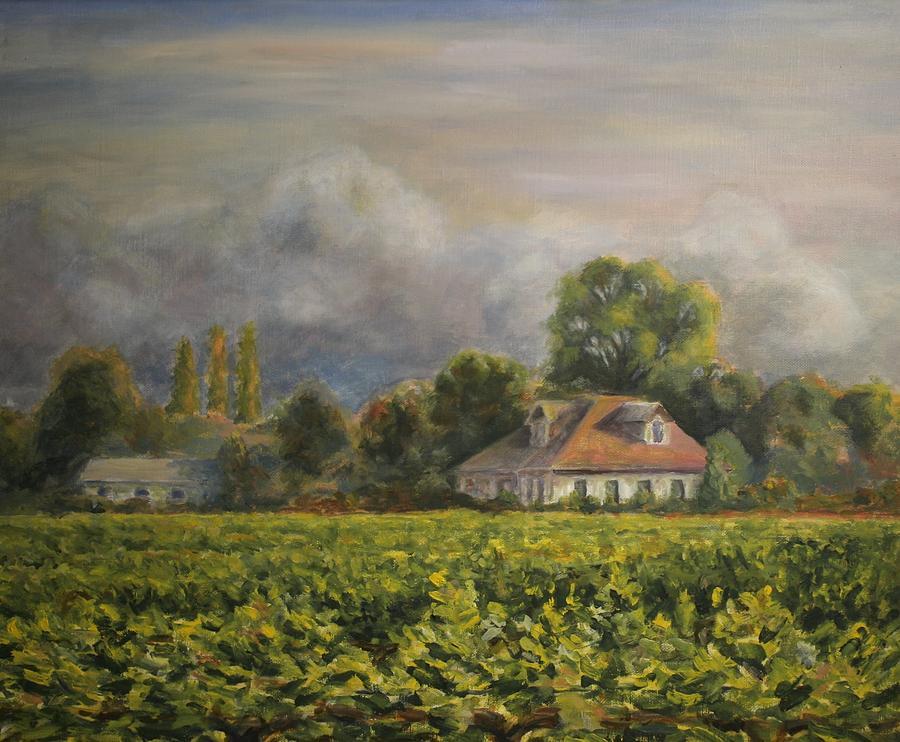 California Painting - Vineyard Fog Santa Rosa by Edward White