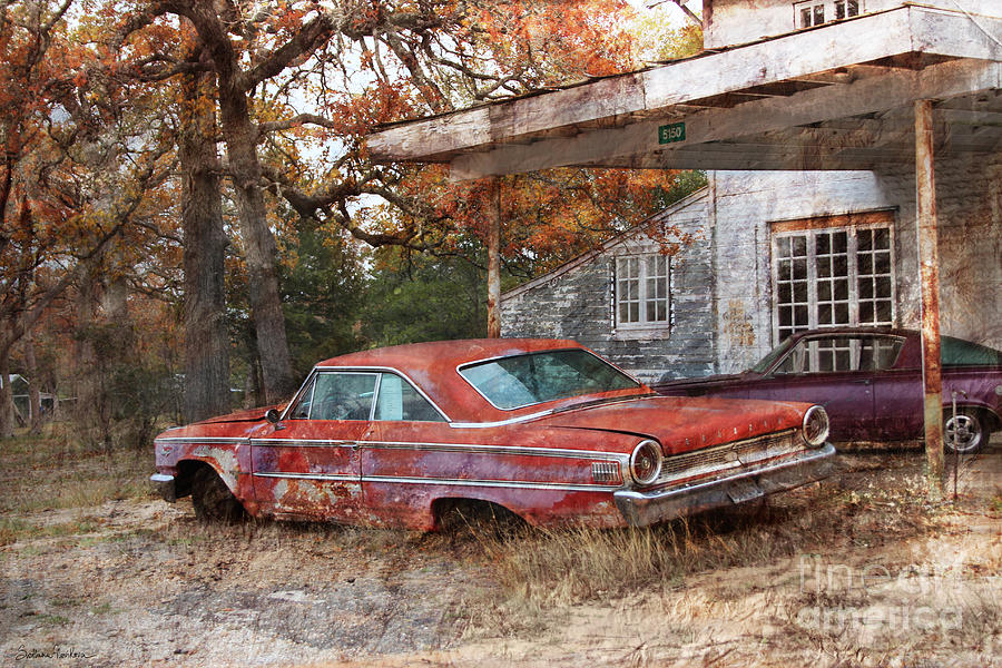 Ford Galaxy Photograph - Vintage 1950 1960 Ford Galaxy Red Car Photo by Svetlana Novikova