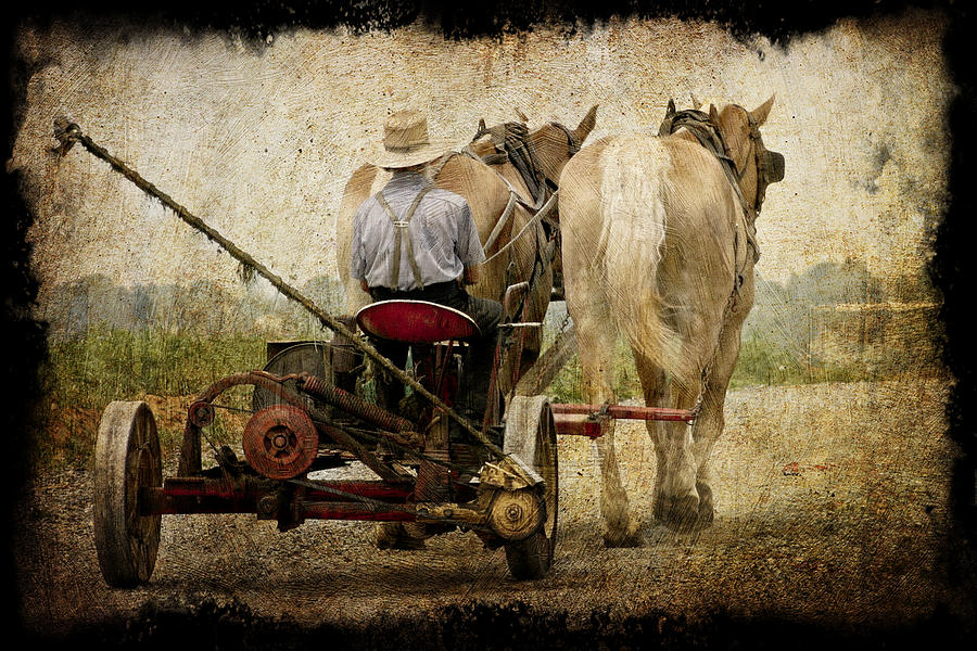 Vintage Amish Life Photograph - Vintage Amish Life D0064 by Wes and Dotty Weber