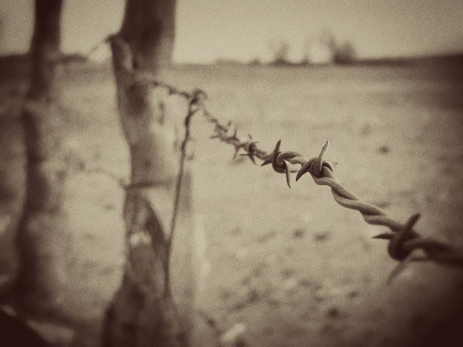 Vintage Barbed Wire Fence Photograph By Megan Chambers