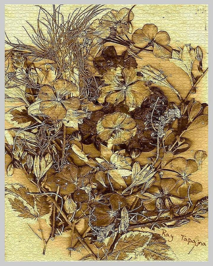 Vintage Flowers Mixed Media - Vintage Flowers for You by Ray Tapajna