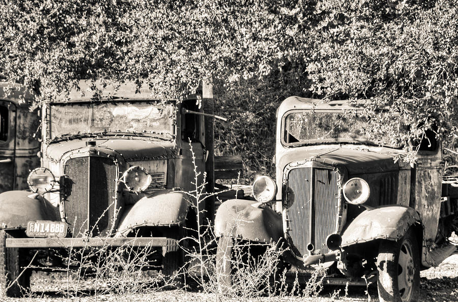 Abandoned photograph vintage old trucks black and white by connie cooper edwards