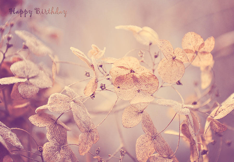 vintage winter flowers happy birthday photograph by lee