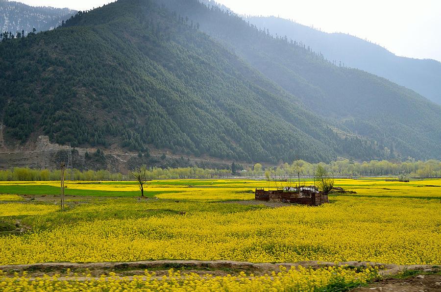 Kashmir Photograph - Visual Treat by Fotosas Photography