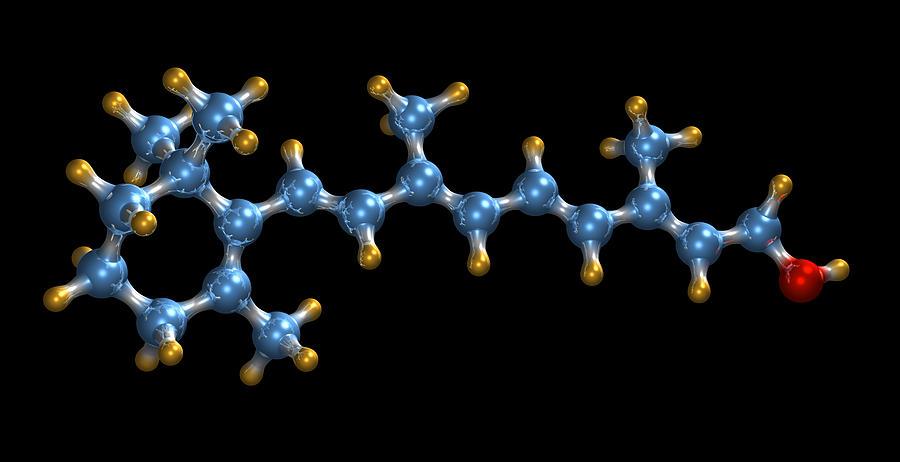 Retinol Photograph - Vitamin A (retinol) Molecule by Dr Mark J. Winter