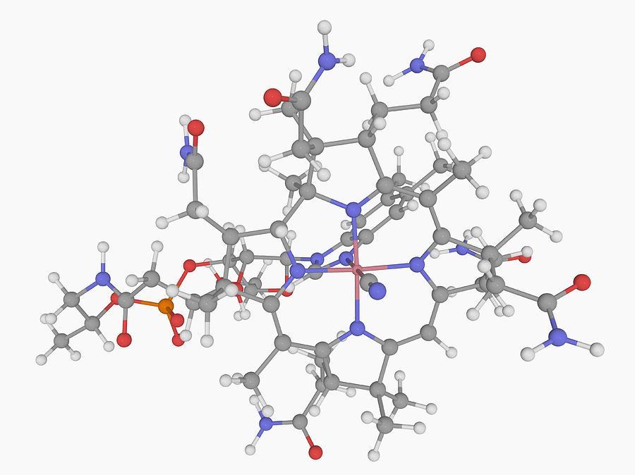 Vitamin B12 (cobalamin) Molecule Digital Art by Laguna Design