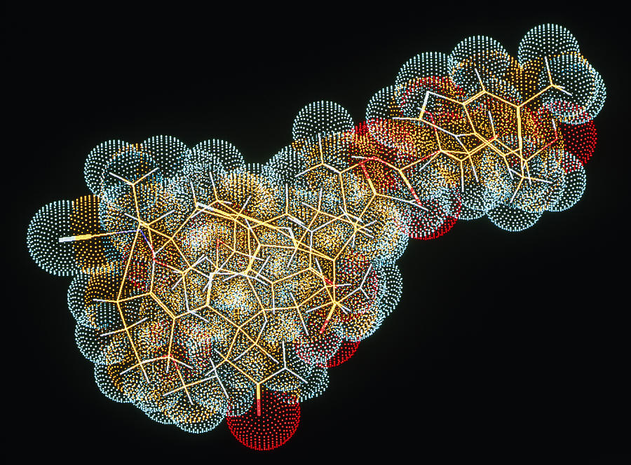 B12 Photograph - Vitamin B12 Molecule by Pasieka