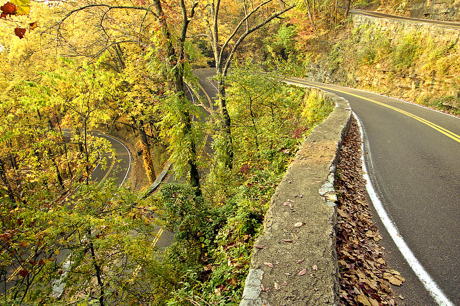 Curves Photograph - W Road In Autumn by Tom and Pat Cory