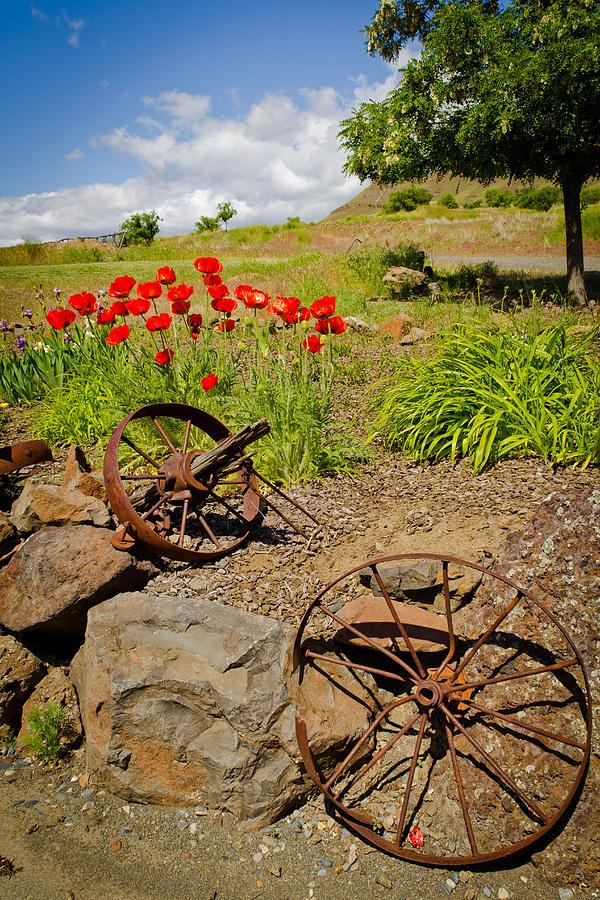 Eastern Oregon Photograph - Wagon Wheels by Jen TenBarge