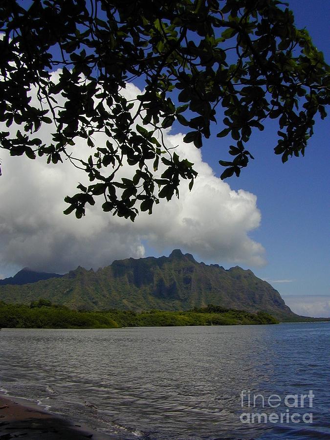 Hawaii Photograph - Waiahole Beach Park by Mark Gilman