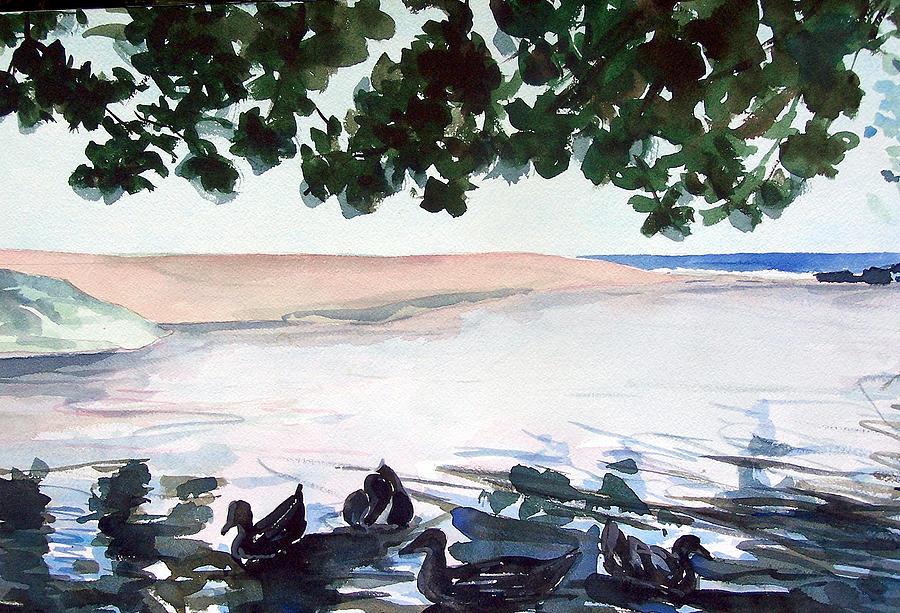 Jon Shepodd Painting - Wainiha Ducks by Jon Shepodd