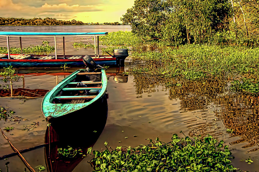 Water Lilies Photograph - Waiting For Tourists by Andre Salvador