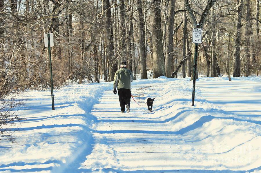 Winter Photograph - Walking The Dog by Paul Ward
