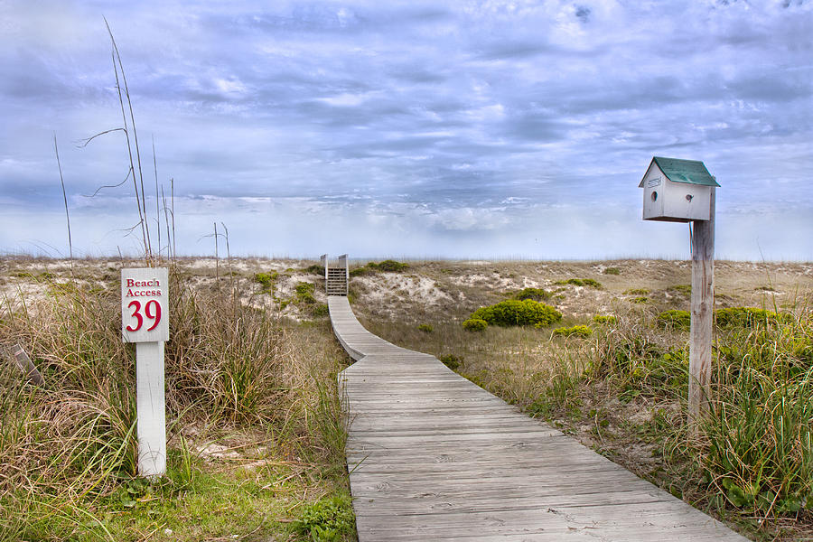 Bald Photograph - Walking To The Beach by Betsy Knapp