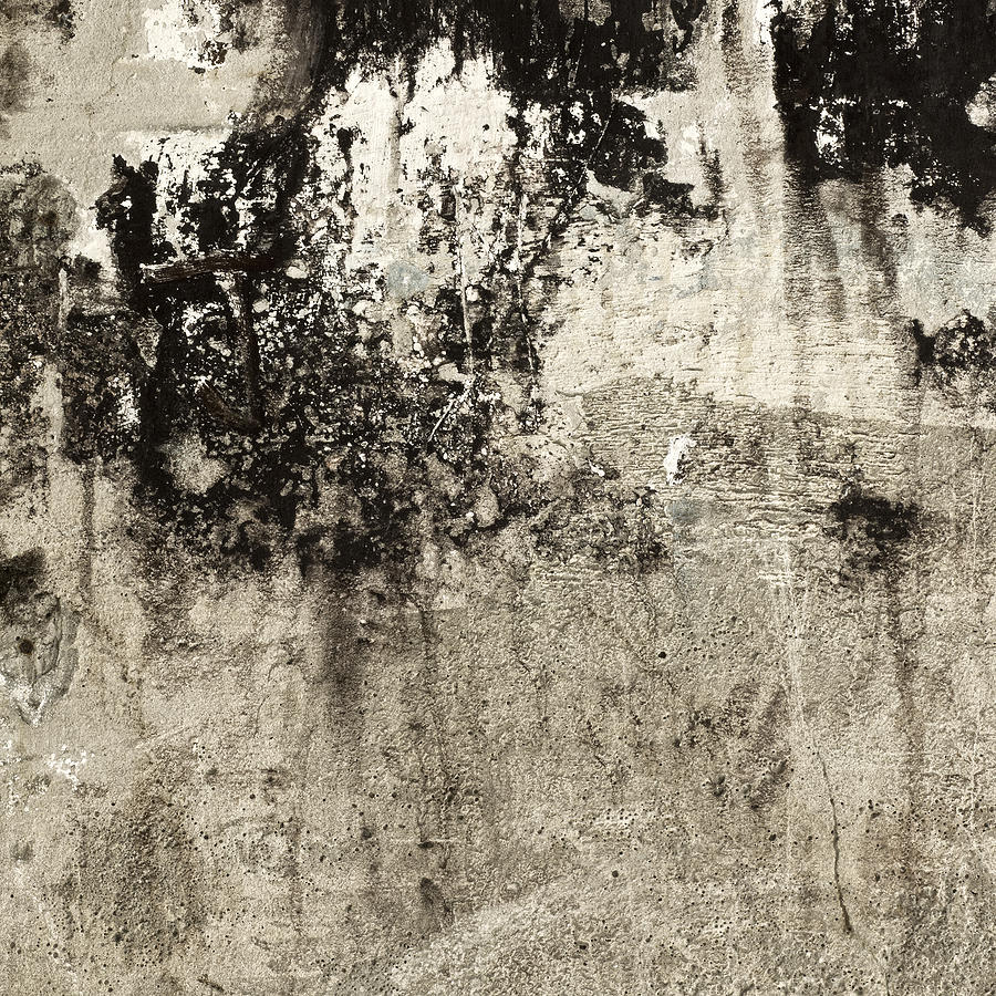 Wall Photograph - Wall Texture Number 9 by Carol Leigh