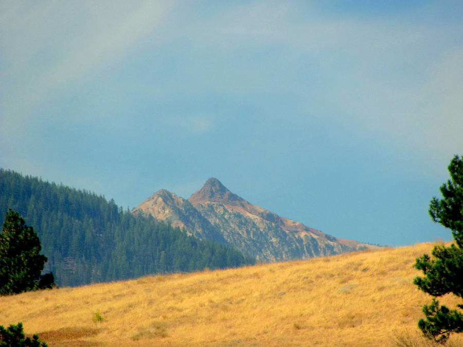 Wallowa Photograph - Wallowa Mountain Peakes by Amy Bradley
