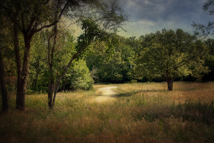 Landscape Photograph - Wandering Path I by Tamyra Ayles