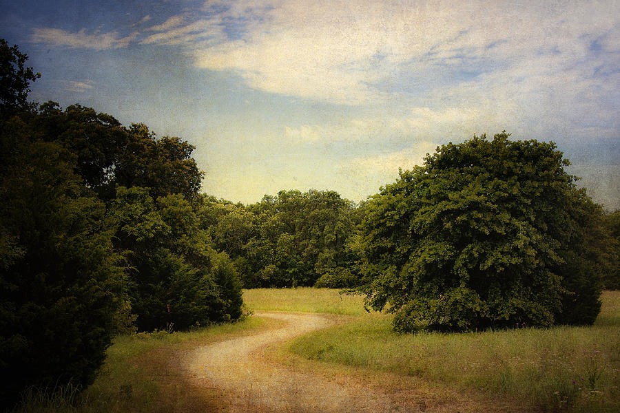 Landscape Photograph - Wandering Path II by Tamyra Ayles