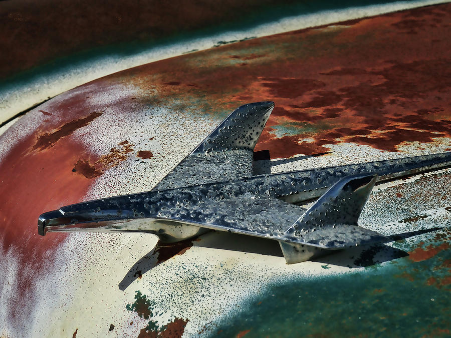 Classic Digital Art - War Bird by Douglas Pittman