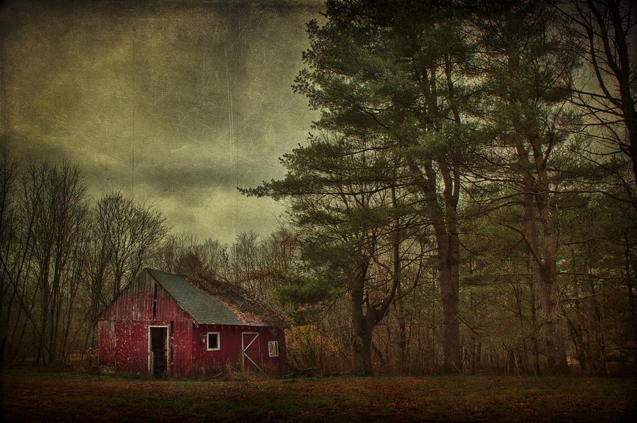 Barn Photograph - Watching Over Me by Evelina Kremsdorf