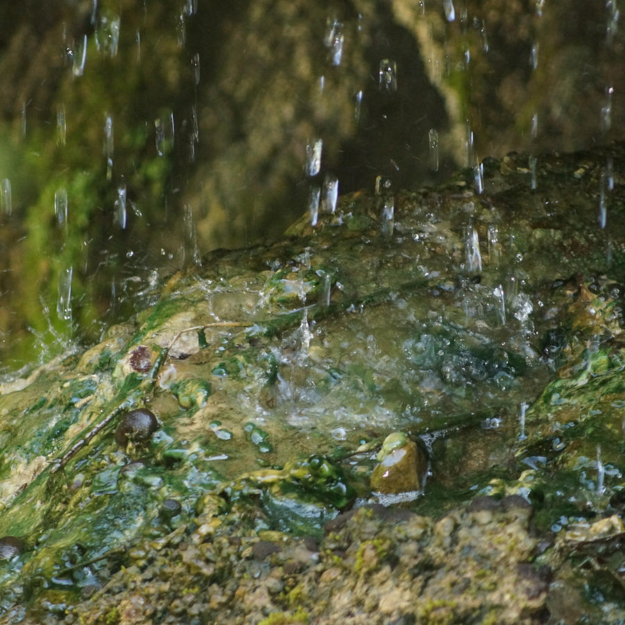 Water Photograph - Water Droplets by Joseph Shaffer