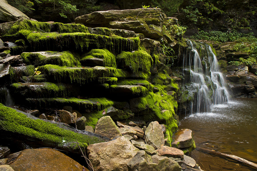 Water Photograph - Water Fall Rickett Park Pa by Stephen EIS