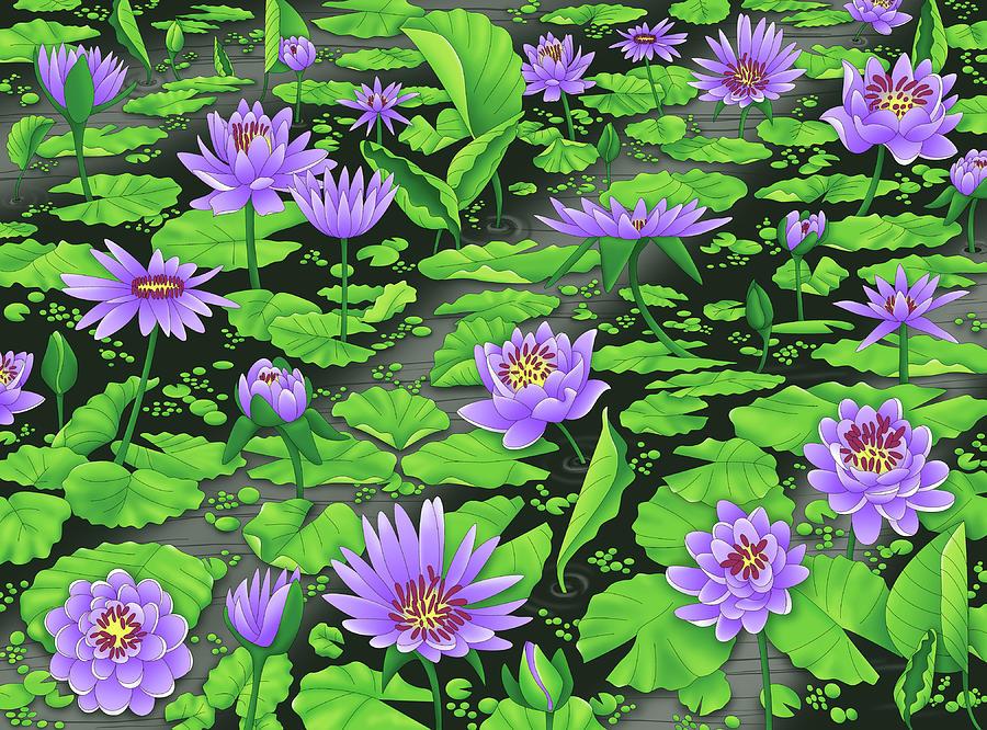 Water Lilies Digital Art by Alison Stein