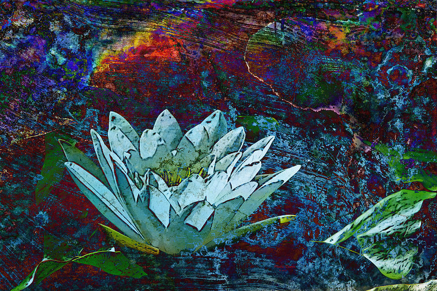 Abstract Photograph - Water Lily Abstract by Phyllis Denton