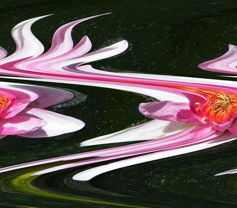 Water Photograph - Water Lily In Turbulent Waters by Mary Sedivy