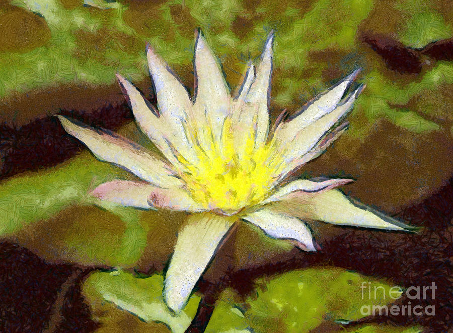 Water Lily Painting - Water Lily by Odon Czintos
