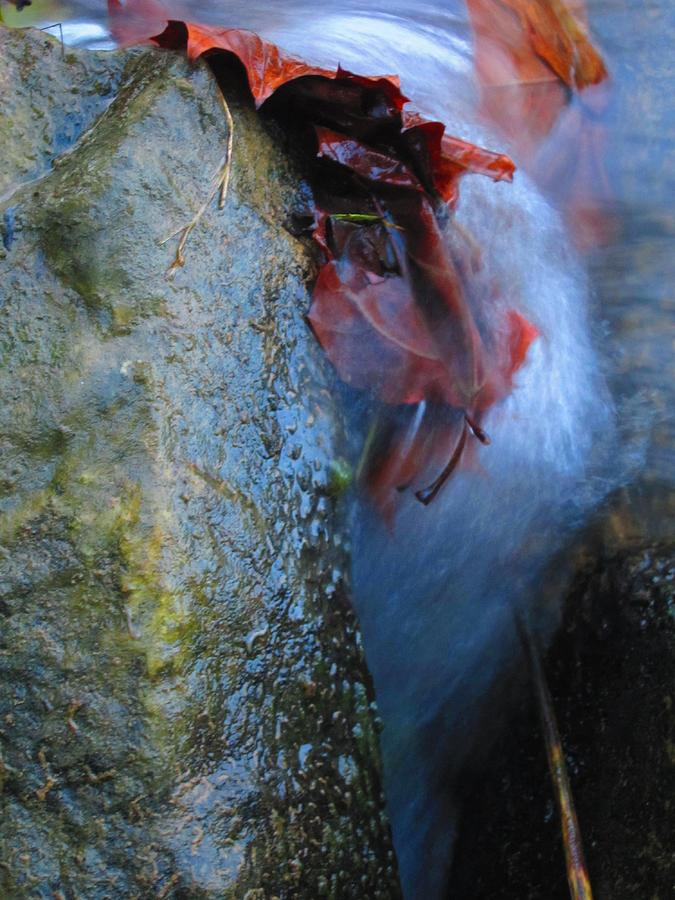 Abstract Photograph - Water Maiden by Lynn Dodds