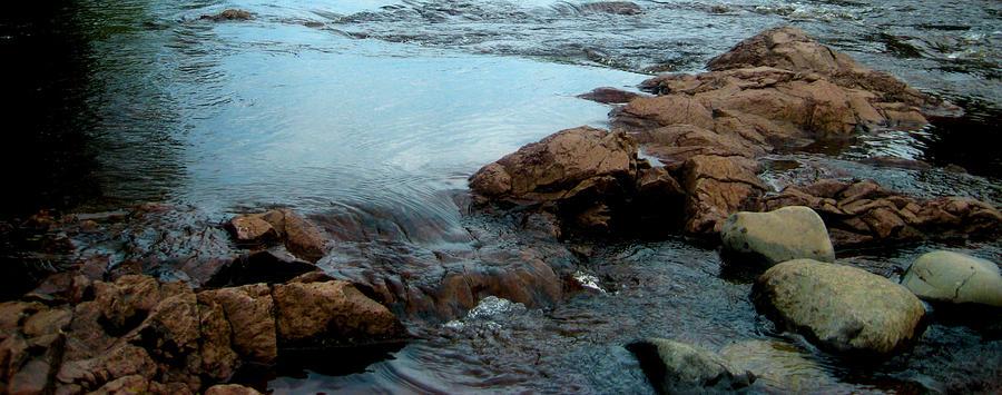 Water Photograph by Shweta Singh