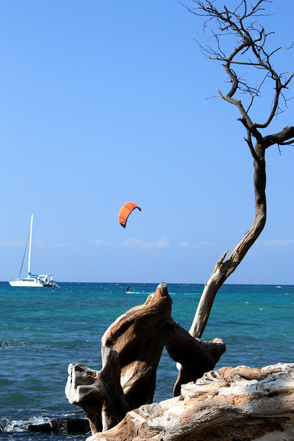 Kites Photograph - Water Sports In Hawaii 2 by Karen Nicholson