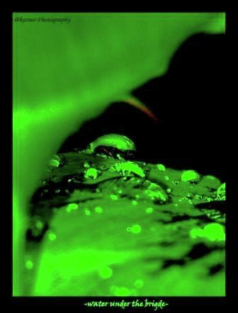 Nature Photograph - Water Under The Bridge by Katlego Mokubyane