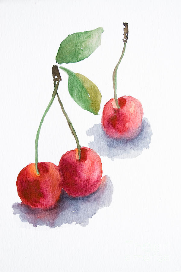 Watercolor Paintings Of Fruit Watercolor Cherry Pain...