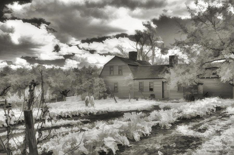 Farm Photograph - Watercolor In Black And White by Joann Vitali