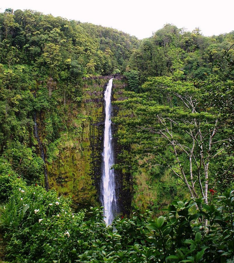 waterfall Hawai Photograph by Luis and Paula Lopez