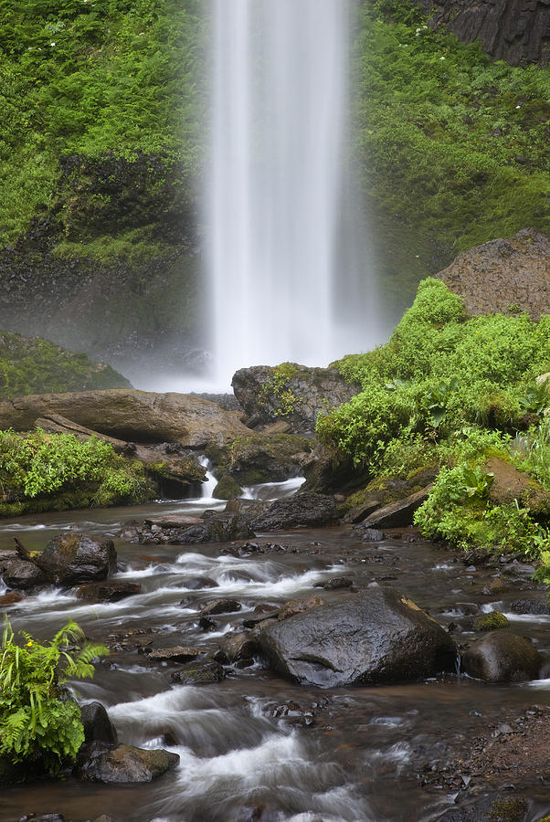 Gorge Photograph - Waterfall In Gorge - Columbia River Gorge by John Gregg